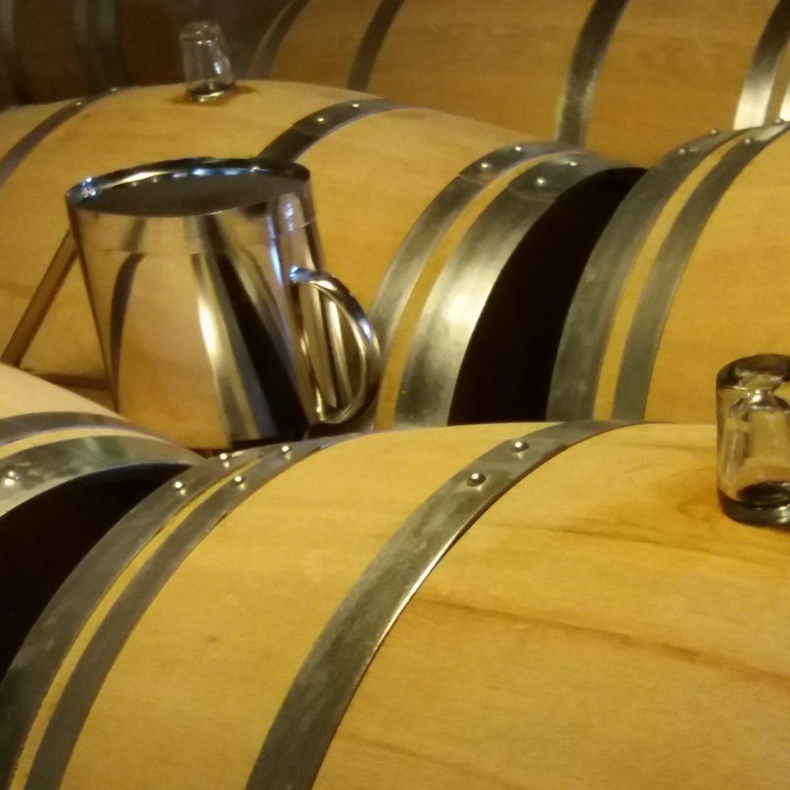 château la tour blanche, grand cru classé 1855. Wine tour Bordeaux la route du vin de bordeaux