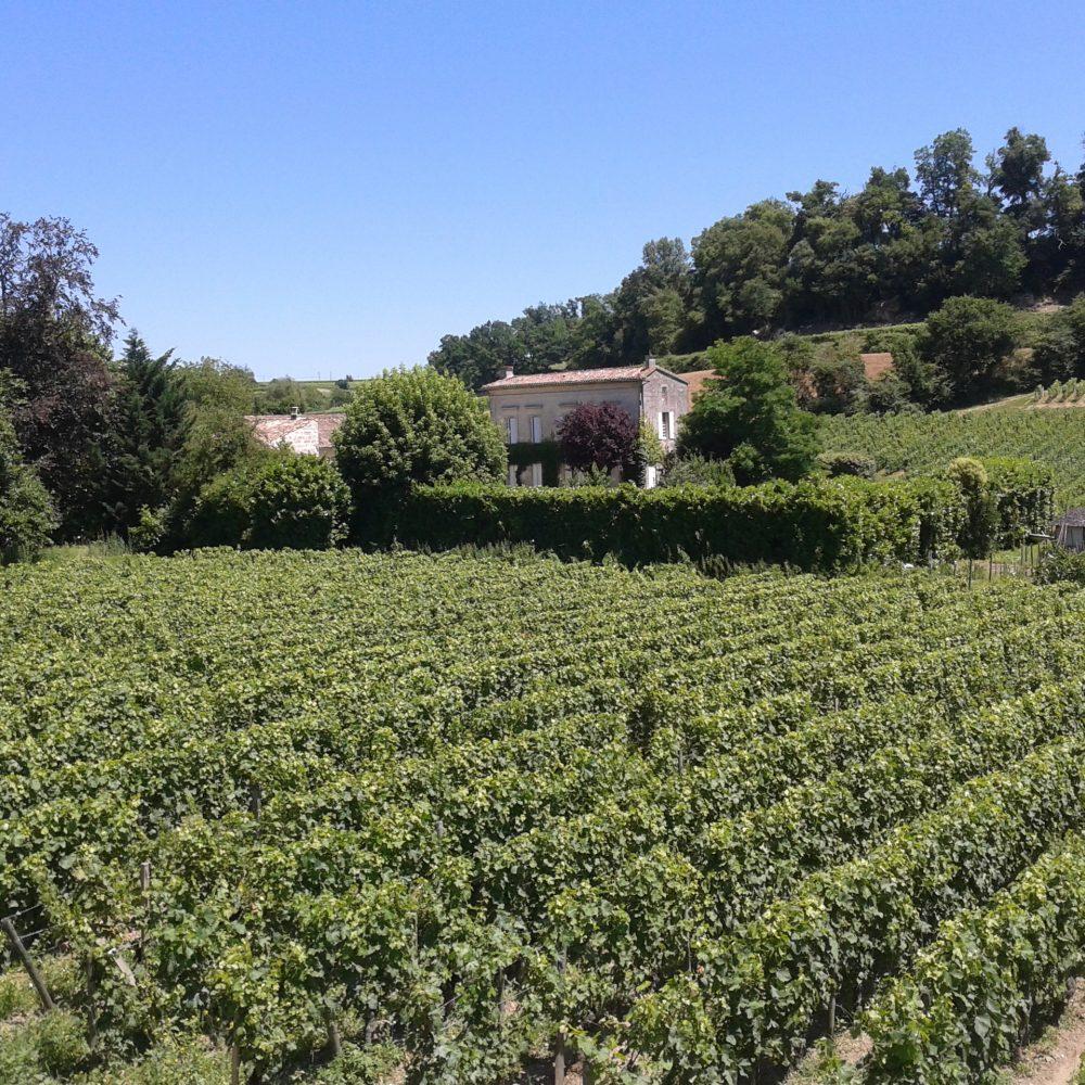 BordeauxSoYou- afternoon - Wine Tour - Saint Emilion