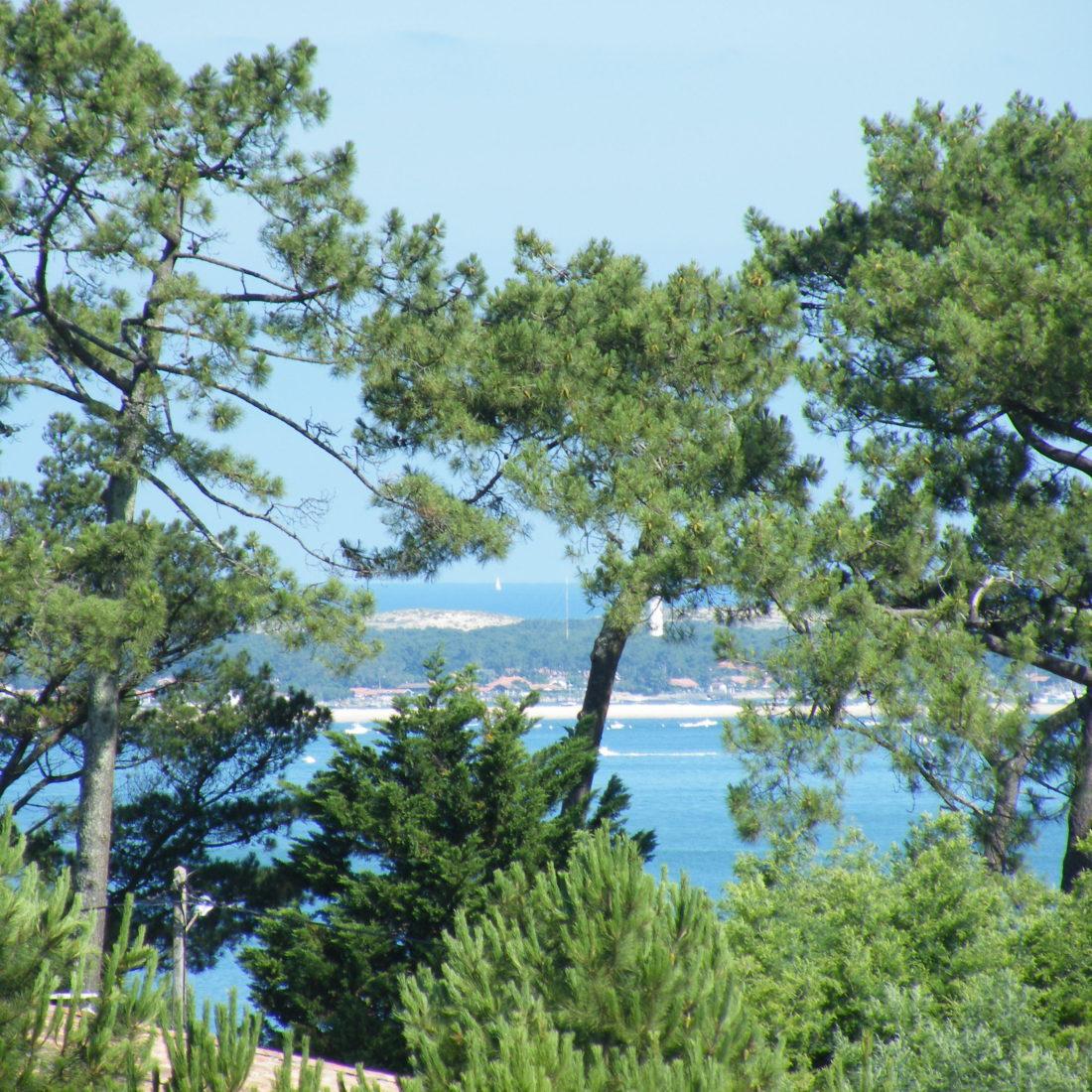 bordeaux so you - tour dune du pilat et bassin arcachon