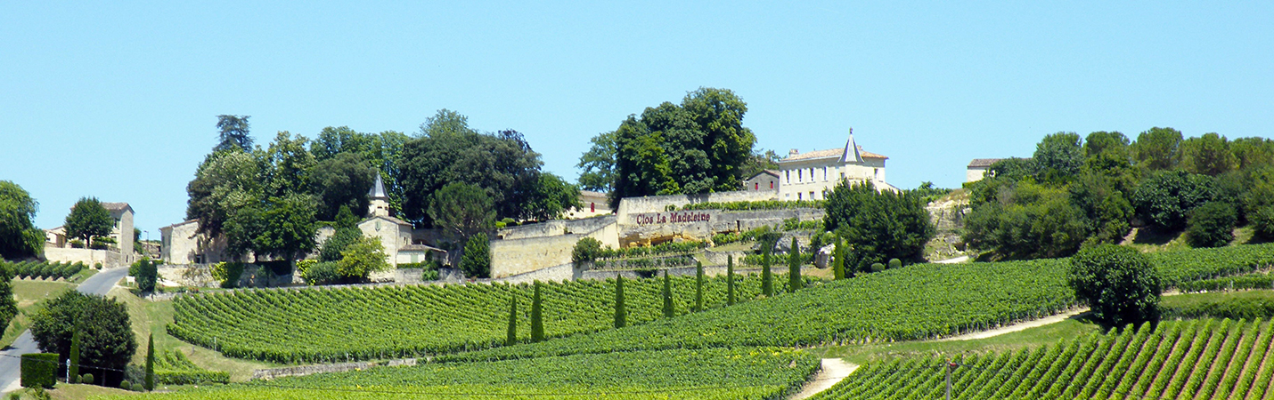 BordeauxSoYou- afternoon – Wine Tour – Saint Emilion