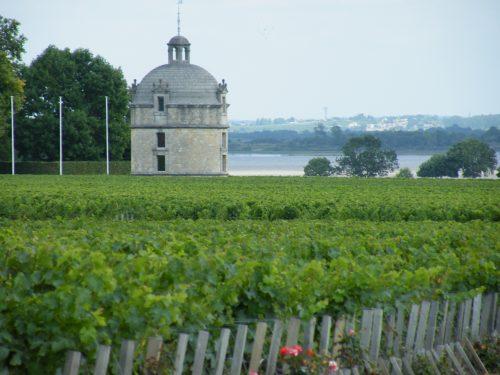 vignoble du médoc  wine tour Bordeaux la route des châteaux médoc