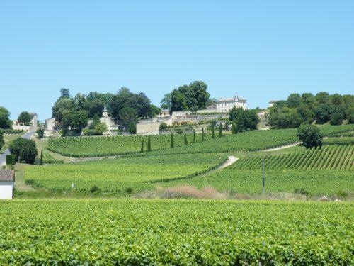 vignoble de Saint-Emilion  wine tour Bordeaux la route des vins de Bordeaux