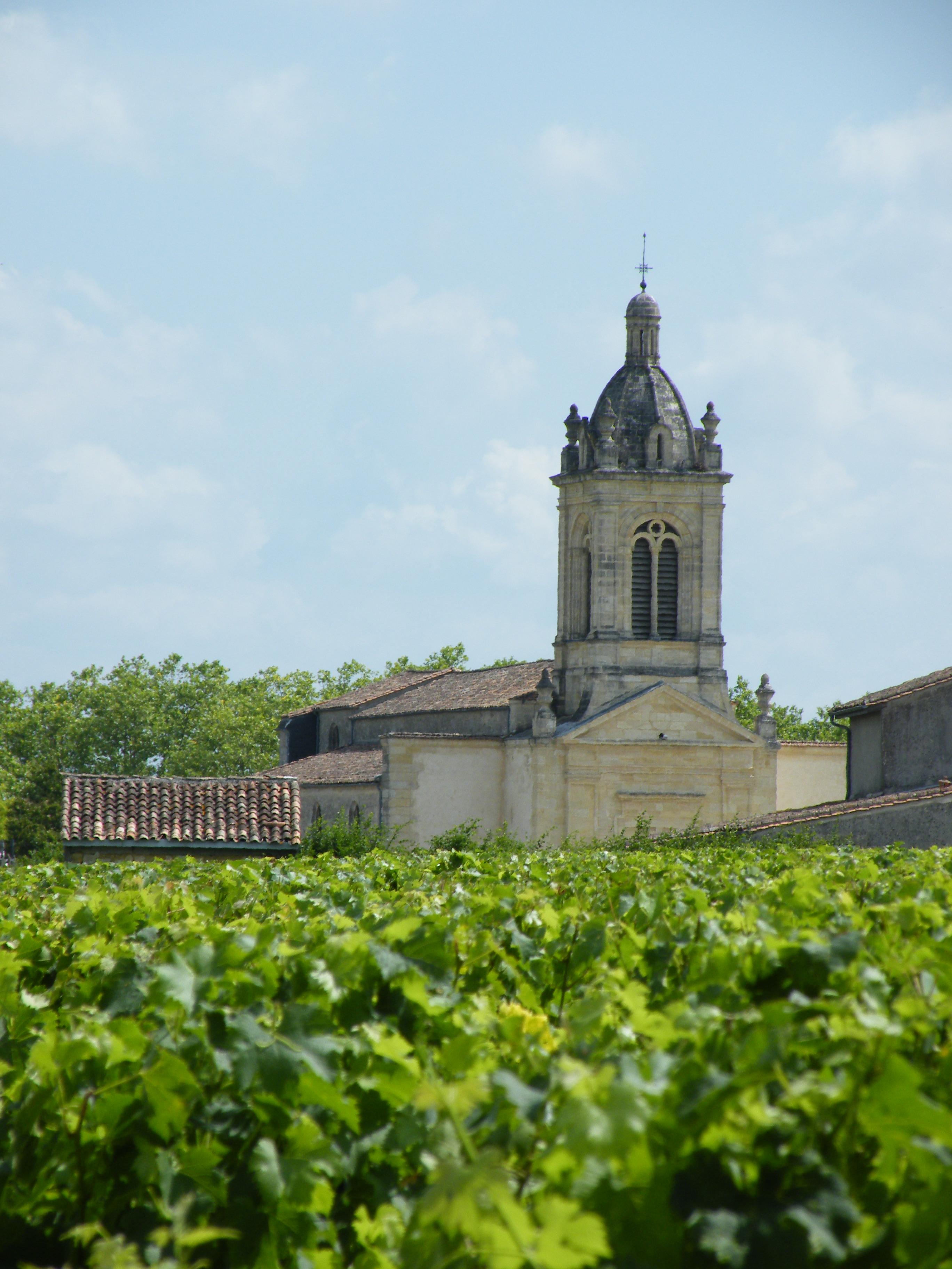 BordeauxSoYou-tarde-Wine Tour-vinedo Saint Emilion