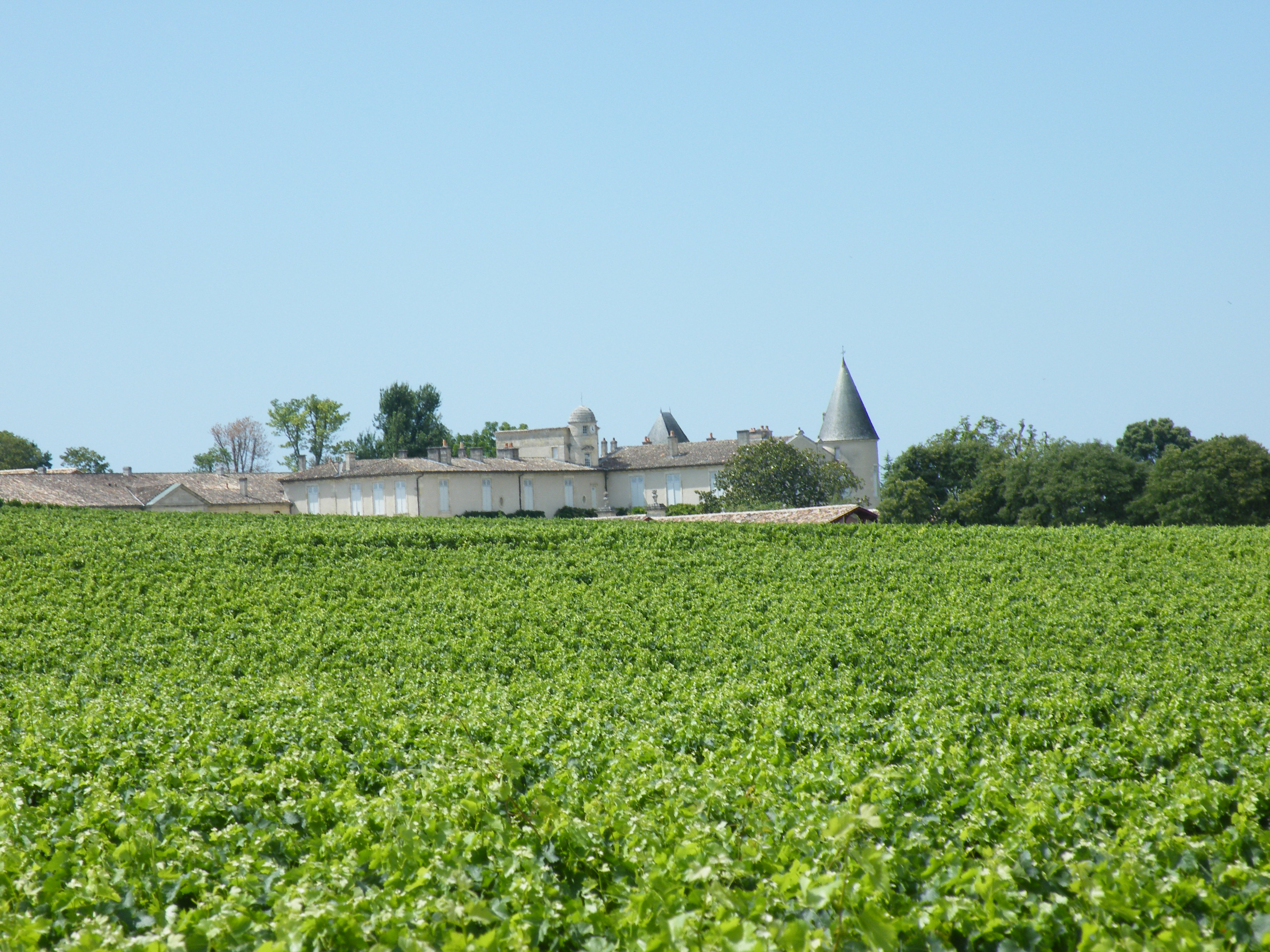 BordeauxSoYou-afternoon-Wine Tour-Saint Emilion