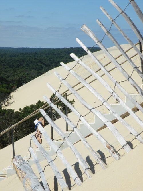 tour journée entière bassin d'arcachon et dune du pilat